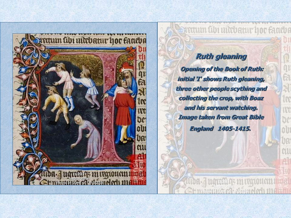 Ruth gleaning Opening of the Book of Ruth: initial I shows Ruth gleaning, three other people scything and collecting the crop, with Boaz and his servant watching.