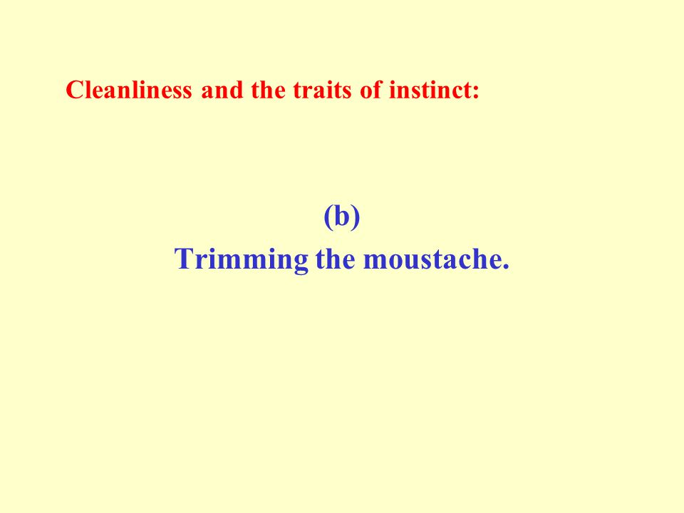 Cleanliness and the traits of instinct: (b) Trimming the moustache.