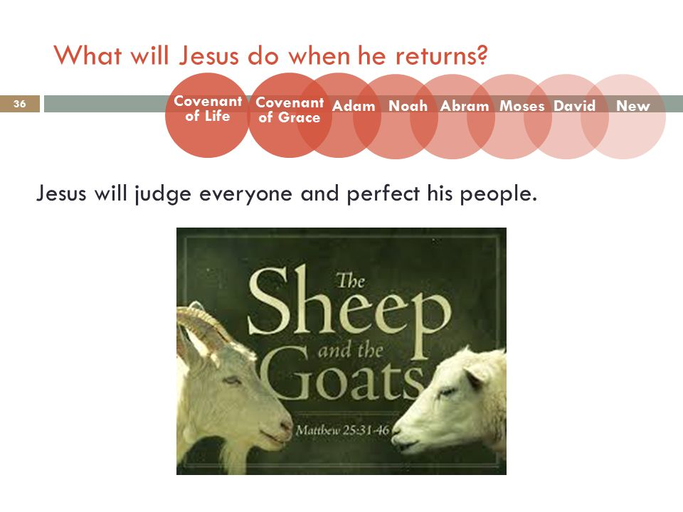 What will Jesus do when he returns. 36 Jesus will judge everyone and perfect his people.