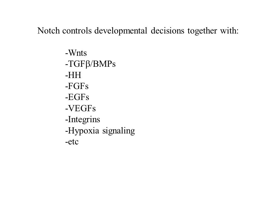 Notch controls developmental decisions together with: -Wnts -TGF  /BMPs -HH -FGFs -EGFs -VEGFs -Integrins -Hypoxia signaling -etc