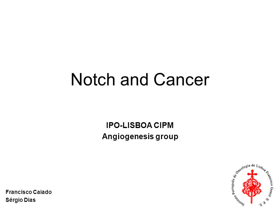 Notch and Cancer IPO-LISBOA CIPM Angiogenesis group Francisco Caiado Sérgio Dias