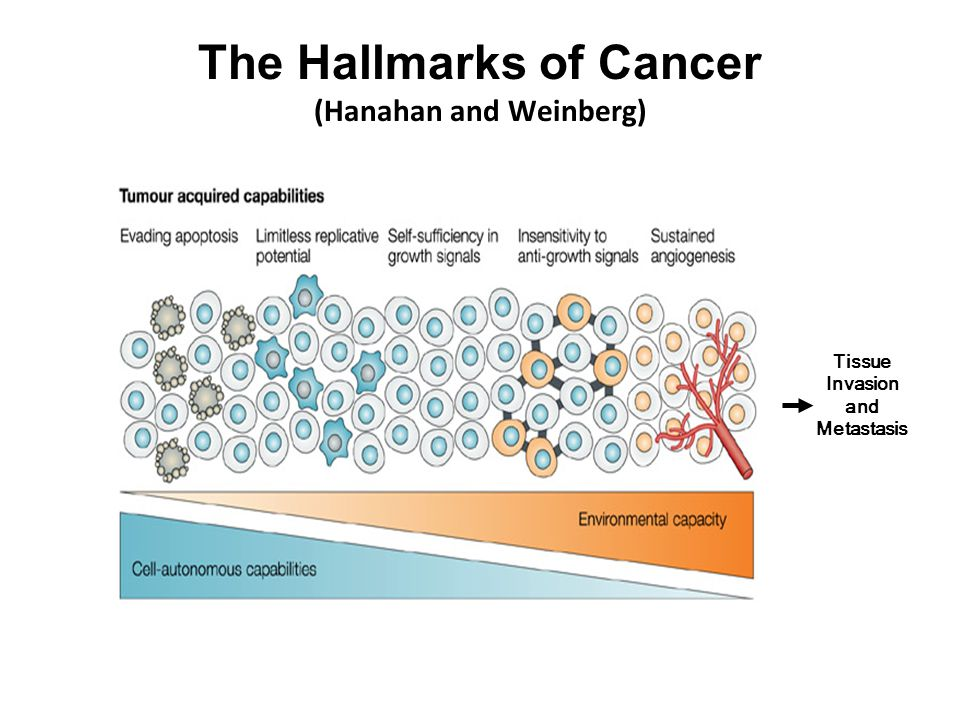 The Hallmarks of Cancer (Hanahan and Weinberg) Tissue Invasion and Metastasis