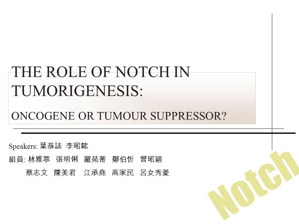 THE ROLE OF NOTCH IN TUMORIGENESIS: ONCOGENE OR TUMOUR SUPPRESSOR.