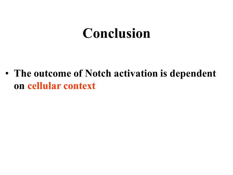 Conclusion The outcome of Notch activation is dependent on cellular context