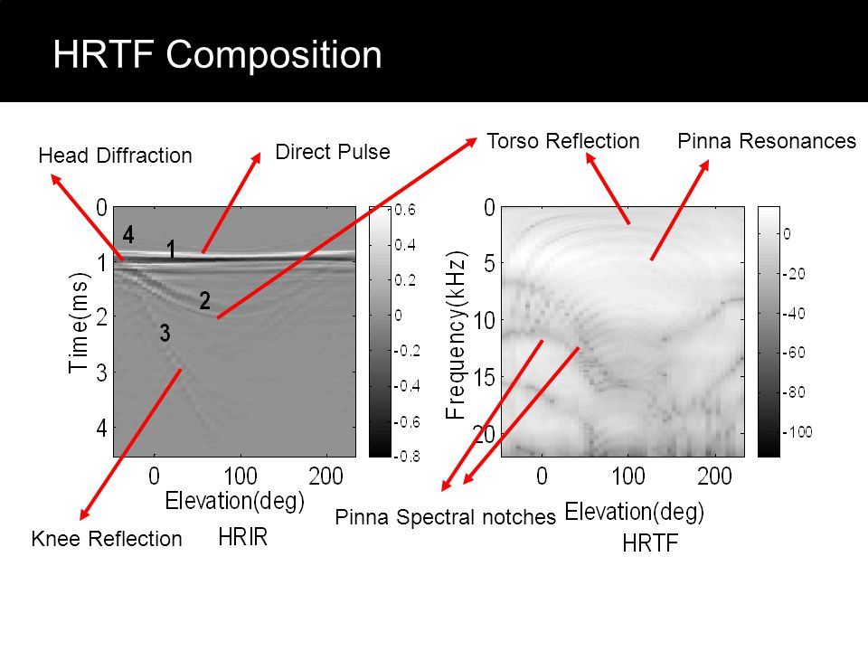 HRTF Composition Direct Pulse Torso Reflection Knee Reflection Pinna Spectral notches Pinna Resonances Head Diffraction