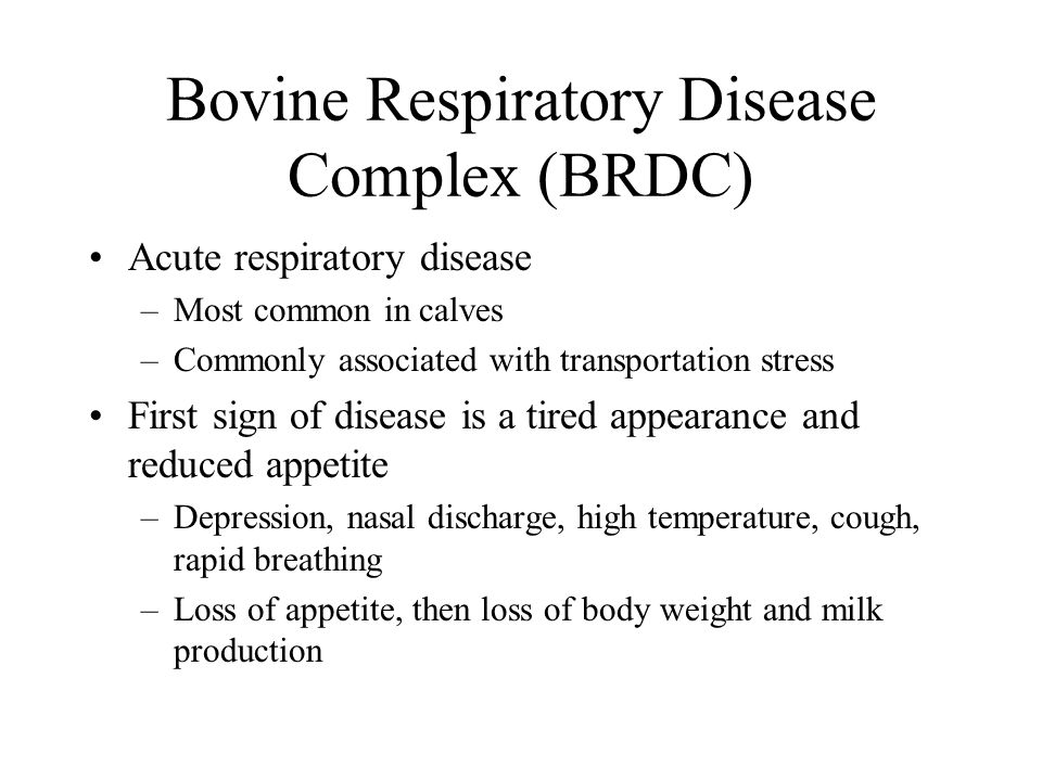 Bovine Respiratory Disease Complex (BRDC) Acute respiratory disease –Most common in calves –Commonly associated with transportation stress First sign of disease is a tired appearance and reduced appetite –Depression, nasal discharge, high temperature, cough, rapid breathing –Loss of appetite, then loss of body weight and milk production