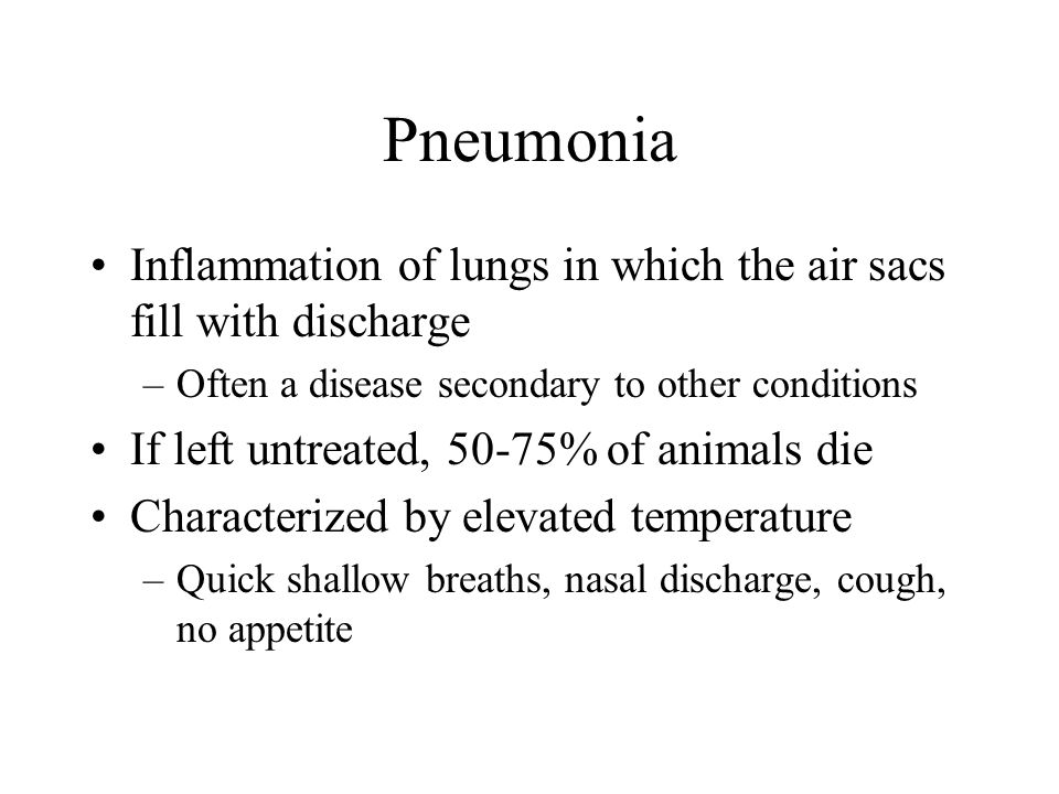 Pneumonia Inflammation of lungs in which the air sacs fill with discharge –Often a disease secondary to other conditions If left untreated, 50-75% of animals die Characterized by elevated temperature –Quick shallow breaths, nasal discharge, cough, no appetite