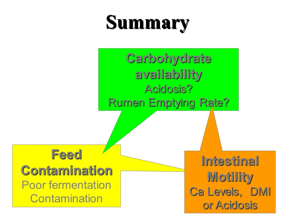 Summary Feed Contamination Poor fermentation Contamination Carbohydrate availability Acidosis.