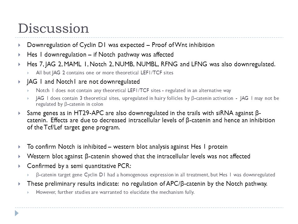 Discussion  Downregulation of Cyclin D1 was expected – Proof of Wnt inhibition  Hes 1 downregulation – if Notch pathway was affected  Hes 7, JAG 2, MAML 1, Notch 2, NUMB, NUMBL, RFNG and LFNG was also downregulated.