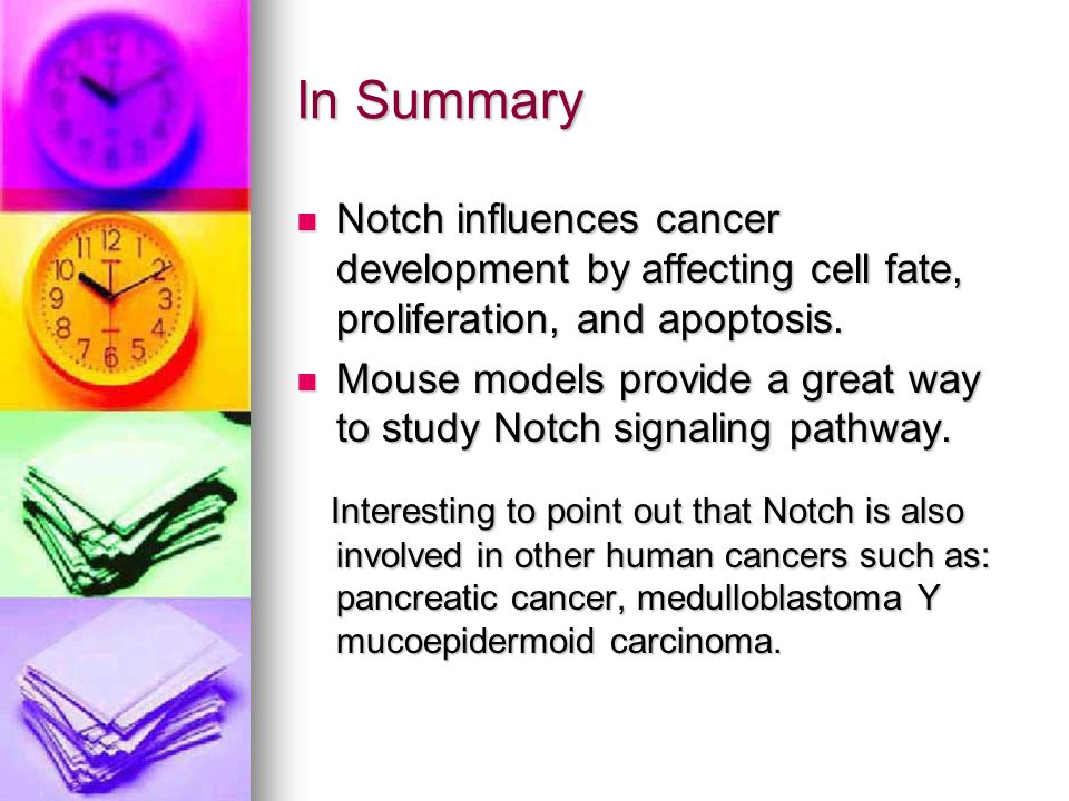 In Summary Notch influences cancer development by affecting cell fate, proliferation, and apoptosis. Notch influences cancer development by affecting