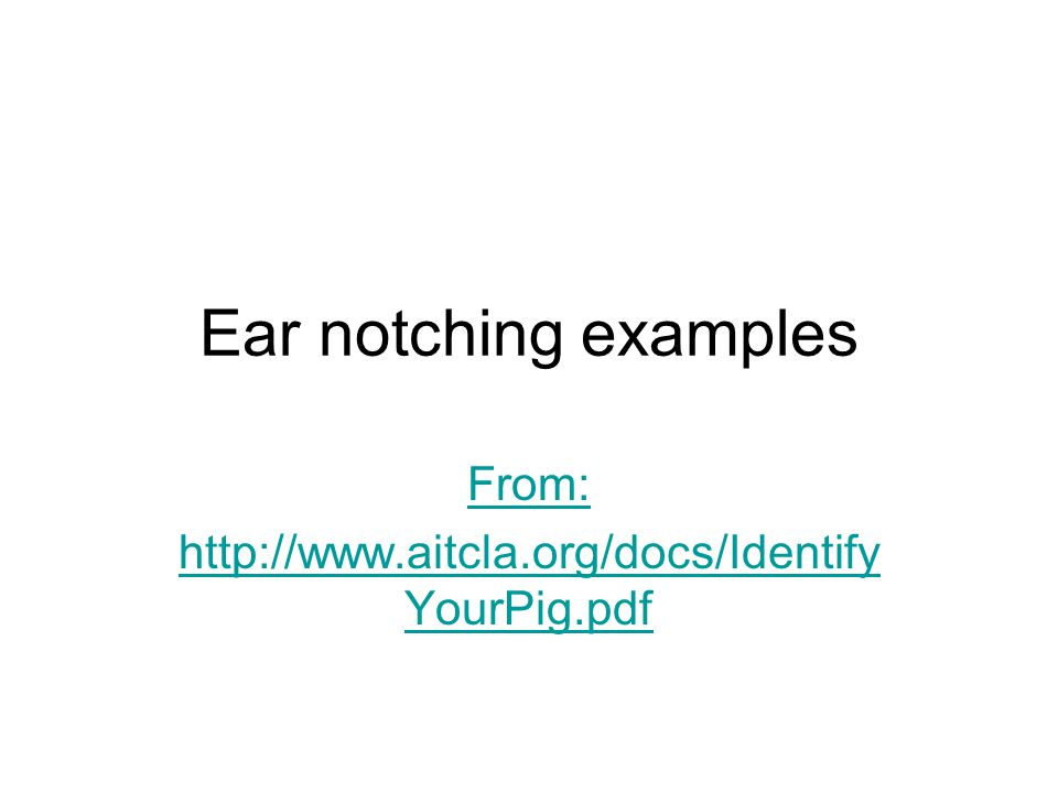 Ear notching examples From: http://www.aitcla.org/docs/Identify YourPig.pdf