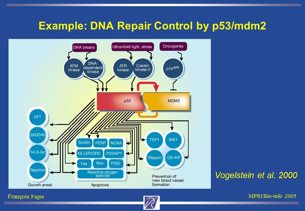 François Fages MPRI Bio-info 2005 Example: DNA Repair Control by p53/mdm2 Vogelstein et al. 2000