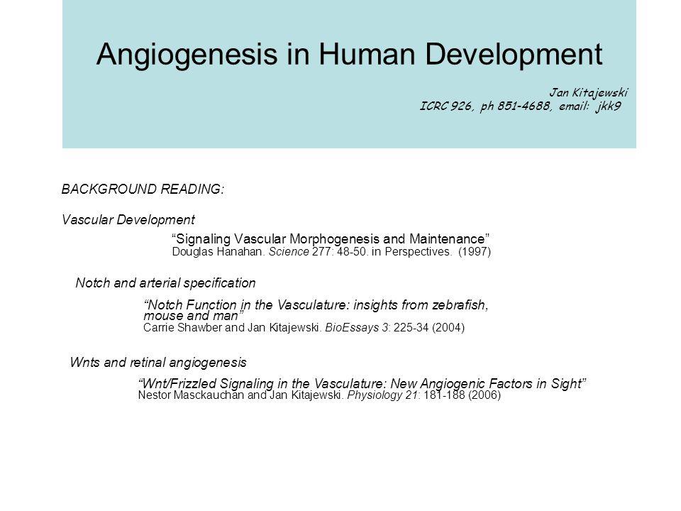 Angiogenesis in Human Development Jan Kitajewski ICRC 926, ph 851-4688, email: jkk9 BACKGROUND READING: Vascular Development Signaling Vascular Morphogenesis and Maintenance Douglas Hanahan.