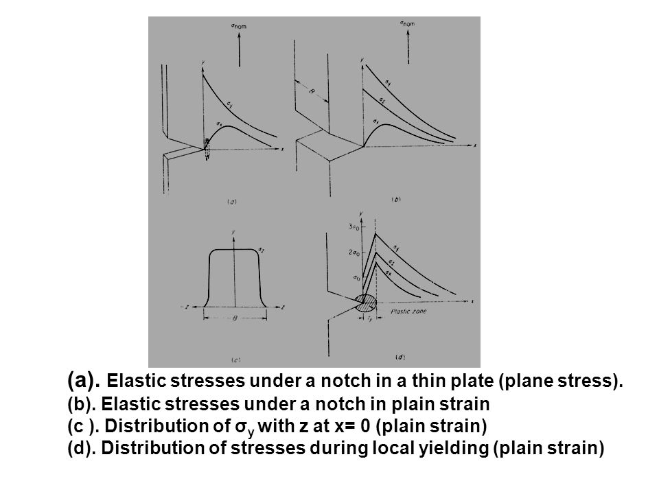 (a). Elastic stresses under a notch in a thin plate (plane stress).
