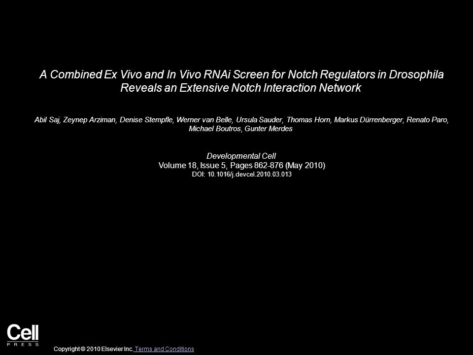 A Combined Ex Vivo and In Vivo RNAi Screen for Notch Regulators in Drosophila Reveals an Extensive Notch Interaction Network Abil Saj, Zeynep Arziman, Denise Stempfle, Werner van Belle, Ursula Sauder, Thomas Horn, Markus Dürrenberger, Renato Paro, Michael Boutros, Gunter Merdes Developmental Cell Volume 18, Issue 5, Pages 862-876 (May 2010) DOI: 10.1016/j.devcel.2010.03.013 Copyright © 2010 Elsevier Inc.