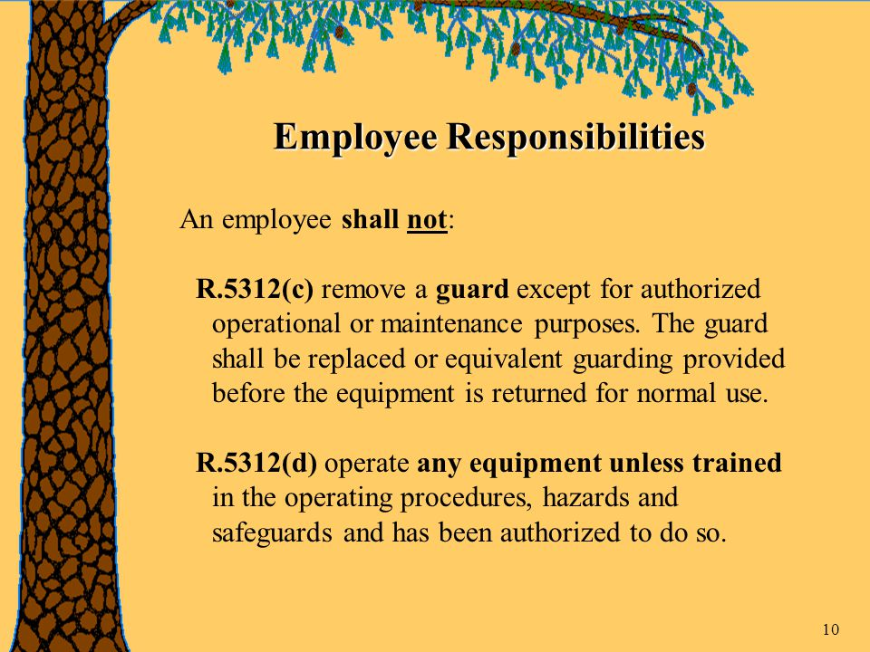 10 Employee Responsibilities An employee shall not: R.5312(c) remove a guard except for authorized operational or maintenance purposes.
