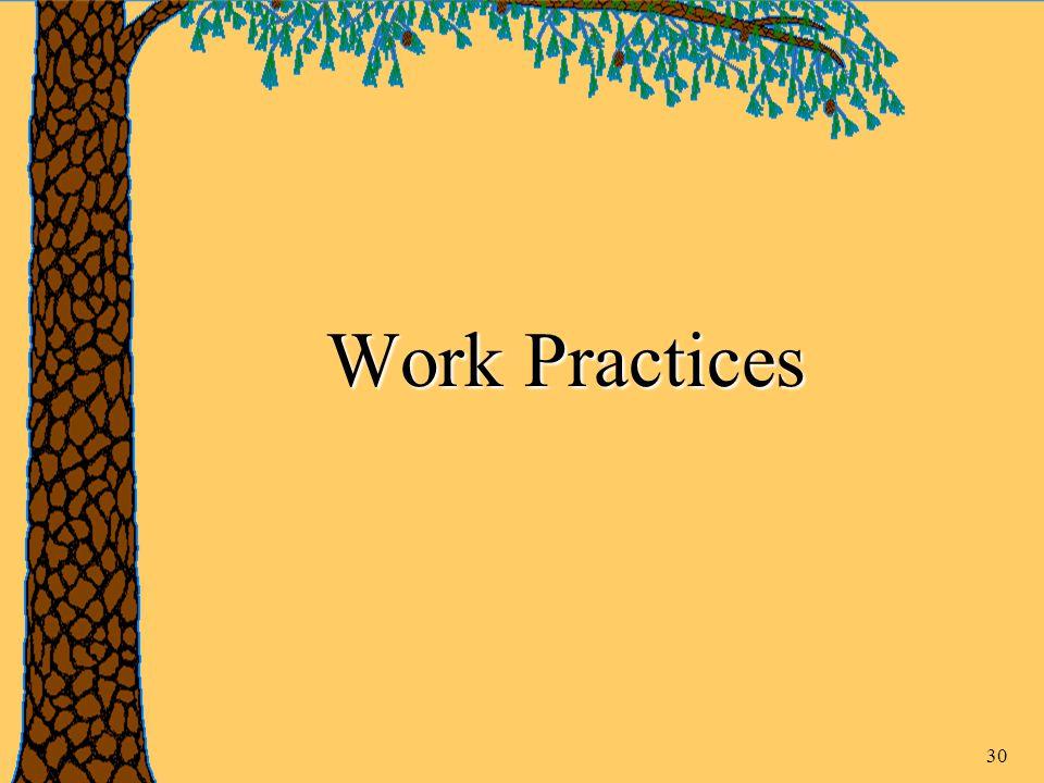 30 Work Practices