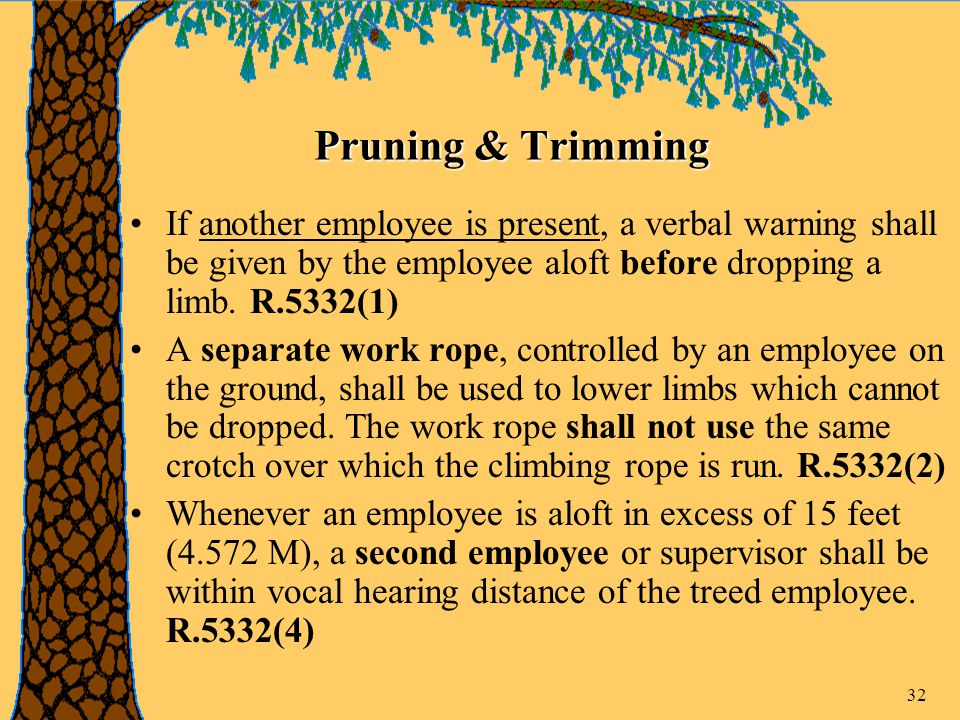 32 Pruning & Trimming If another employee is present, a verbal warning shall be given by the employee aloft before dropping a limb.