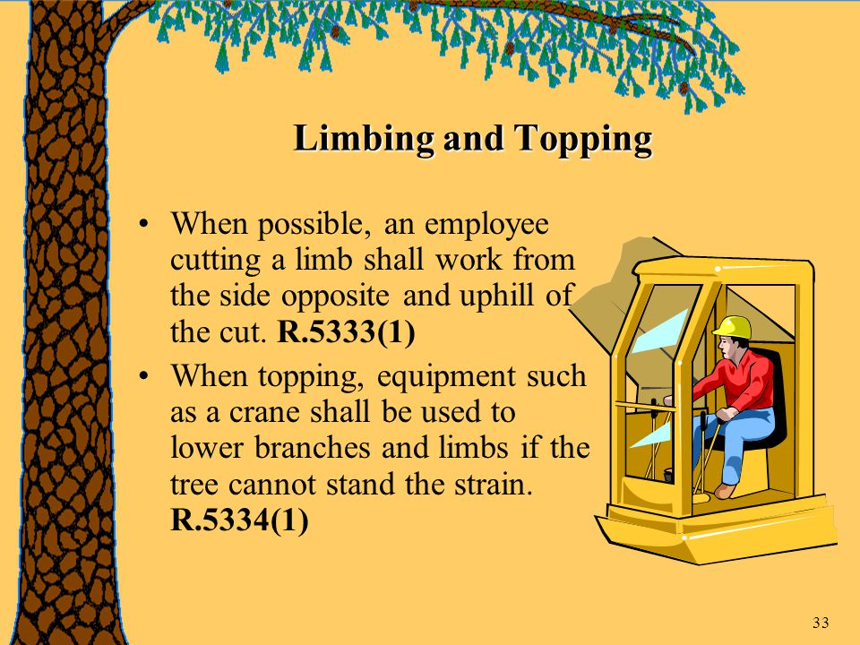 33 Limbing and Topping When possible, an employee cutting a limb shall work from the side opposite and uphill of the cut.
