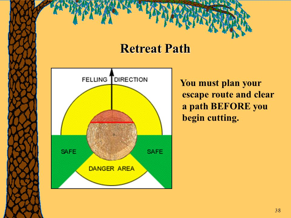 38 Retreat Path You must plan your escape route and clear a path BEFORE you begin cutting.