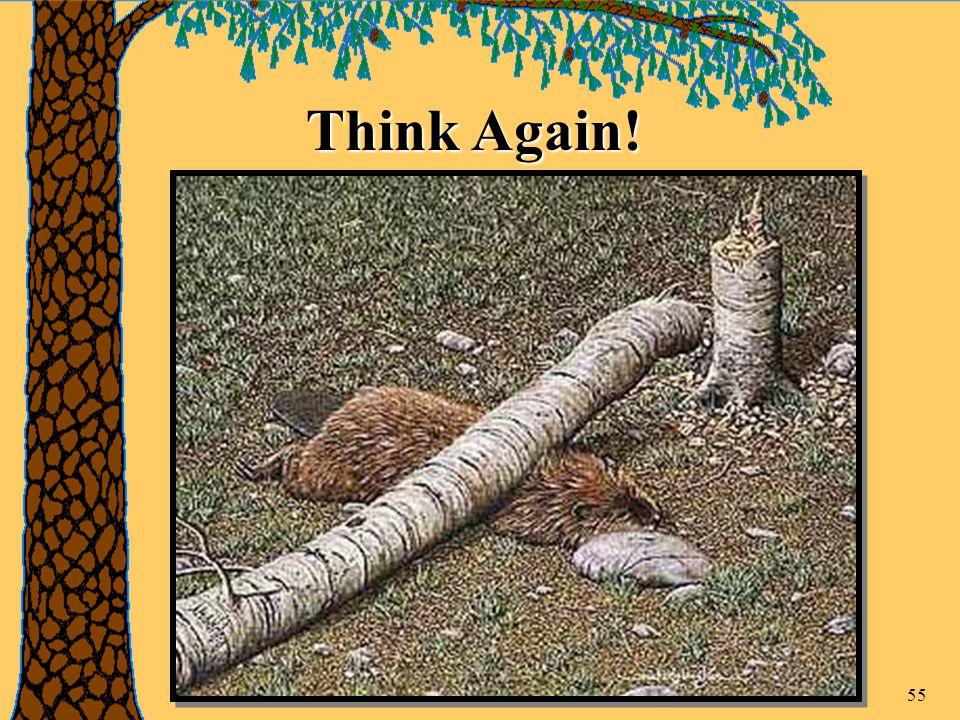 55 Think Again!