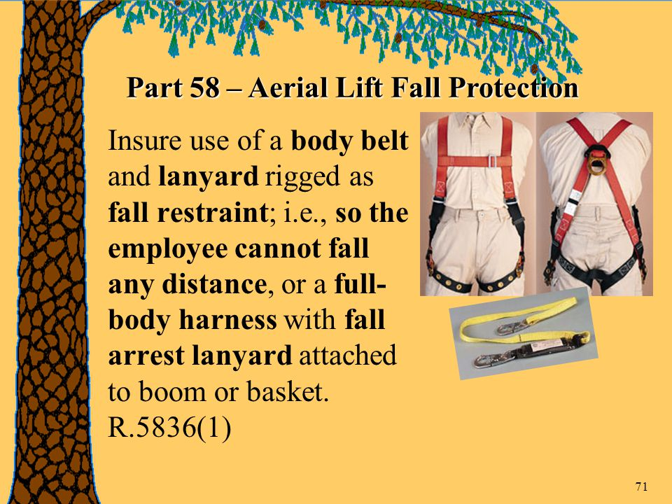 71 Insure use of a body belt and lanyard rigged as fall restraint; i.e., so the employee cannot fall any distance, or a full- body harness with fall arrest lanyard attached to boom or basket.