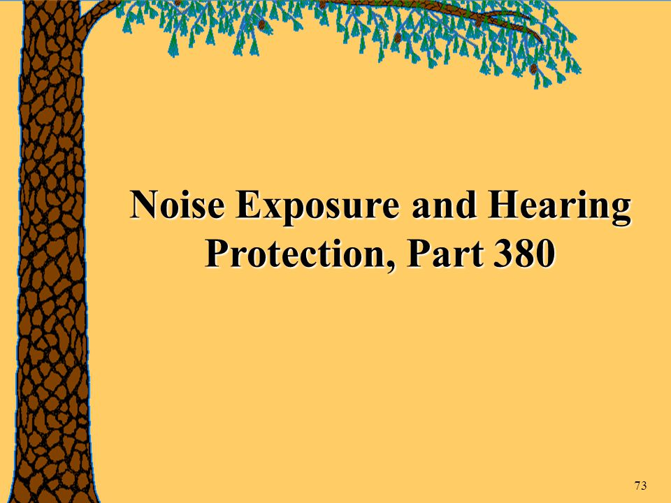 73 Noise Exposure and Hearing Protection, Part 380