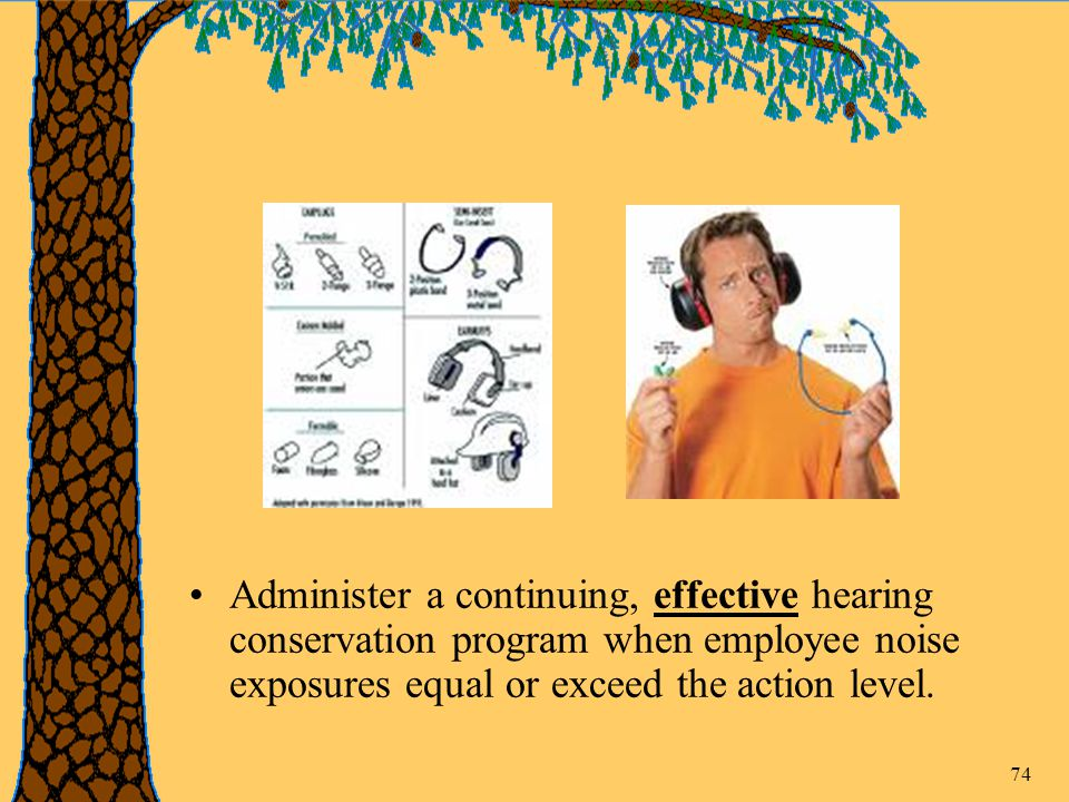 74 Administer a continuing, effective hearing conservation program when employee noise exposures equal or exceed the action level.
