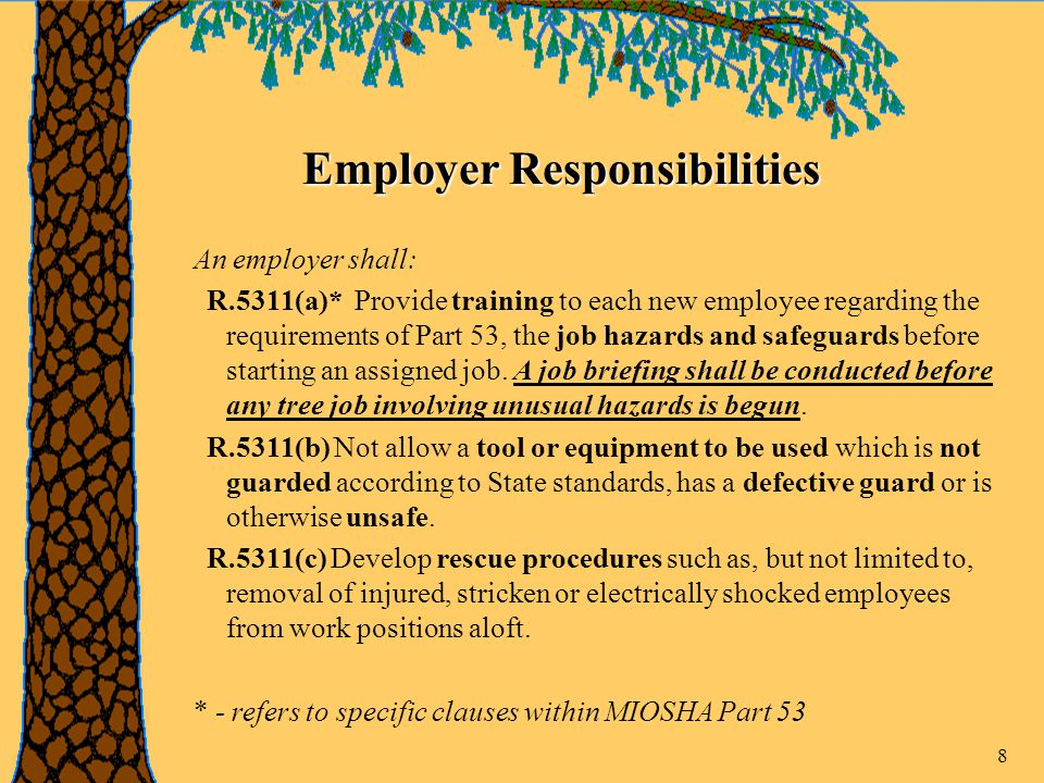 8 Employer Responsibilities An employer shall: R.5311(a)* Provide training to each new employee regarding the requirements of Part 53, the job hazards and safeguards before starting an assigned job.