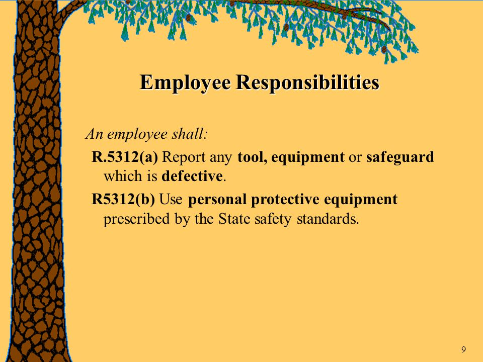 9 Employee Responsibilities An employee shall: R.5312(a) Report any tool, equipment or safeguard which is defective.