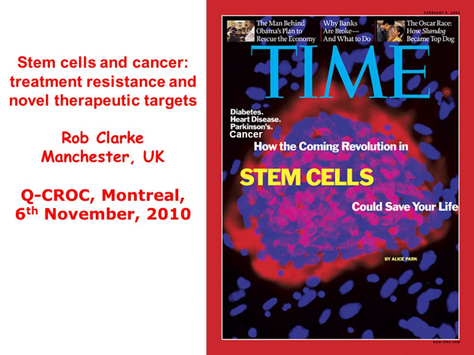 Stem cells and cancer: treatment resistance and novel therapeutic targets Rob Clarke Manchester, UK Q-CROC, Montreal, 6 th November, 2010 Cancer