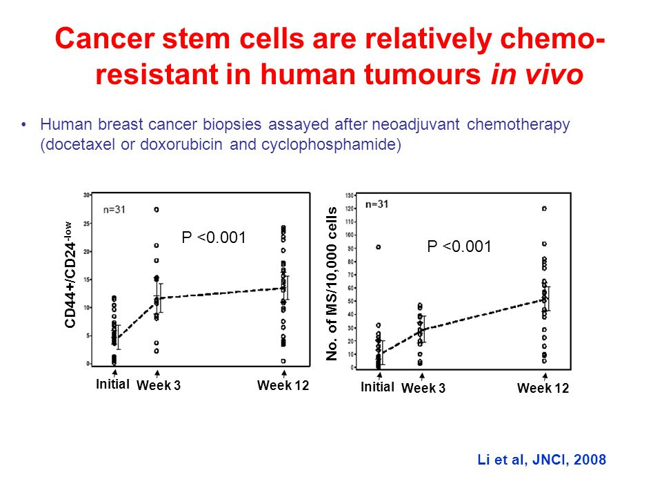 Cancer stem cells are relatively chemo- resistant in human tumours in vivo Human breast cancer biopsies assayed after neoadjuvant chemotherapy (doceta