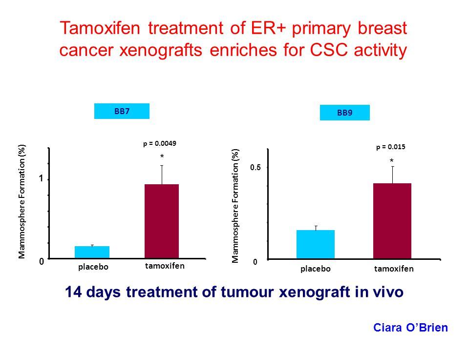 p = 0.0049 BB7 * placebo tamoxifen BB9 placebotamoxifen p = 0.015 * Tamoxifen treatment of ER+ primary breast cancer xenografts enriches for CSC activ