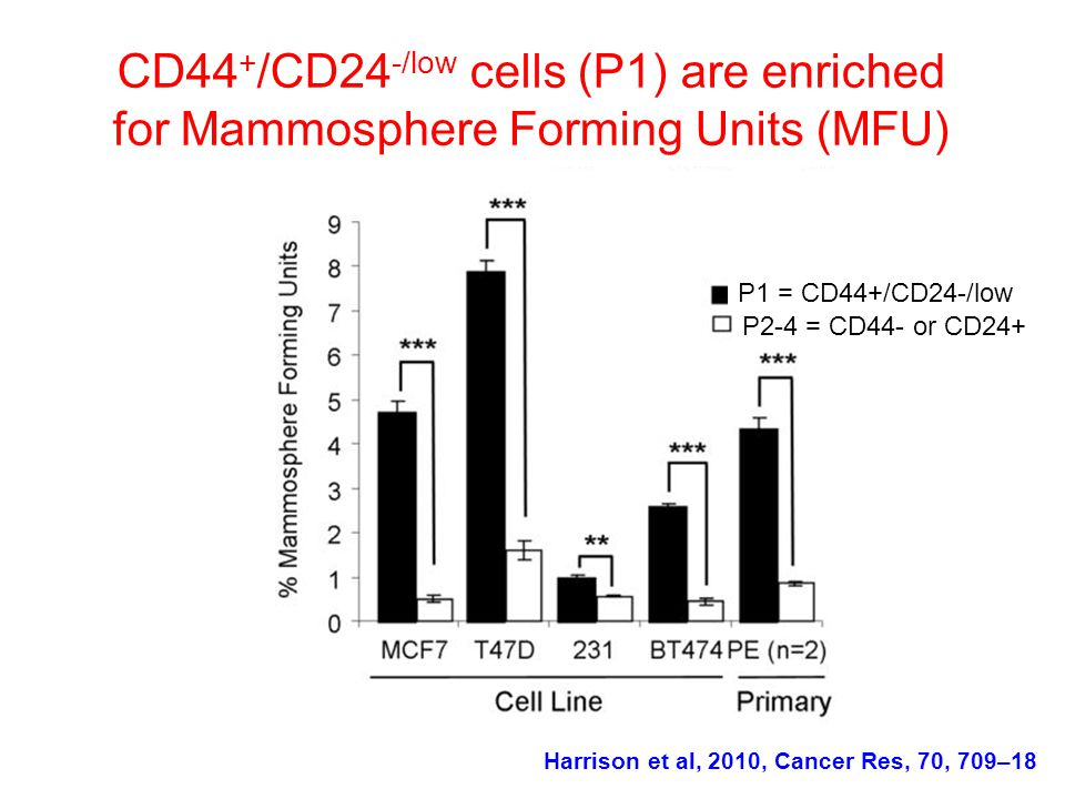 CD44 + /CD24 -/low cells (P1) are enriched for Mammosphere Forming Units (MFU) P1 = CD44+/CD24-/low Harrison et al, 2010, Cancer Res, 70, 709–18 P2-4