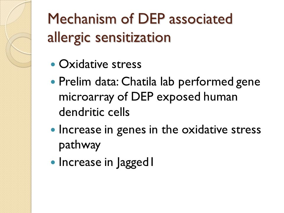 Mechanism of DEP associated allergic sensitization Oxidative stress Prelim data: Chatila lab performed gene microarray of DEP exposed human dendritic cells Increase in genes in the oxidative stress pathway Increase in Jagged1
