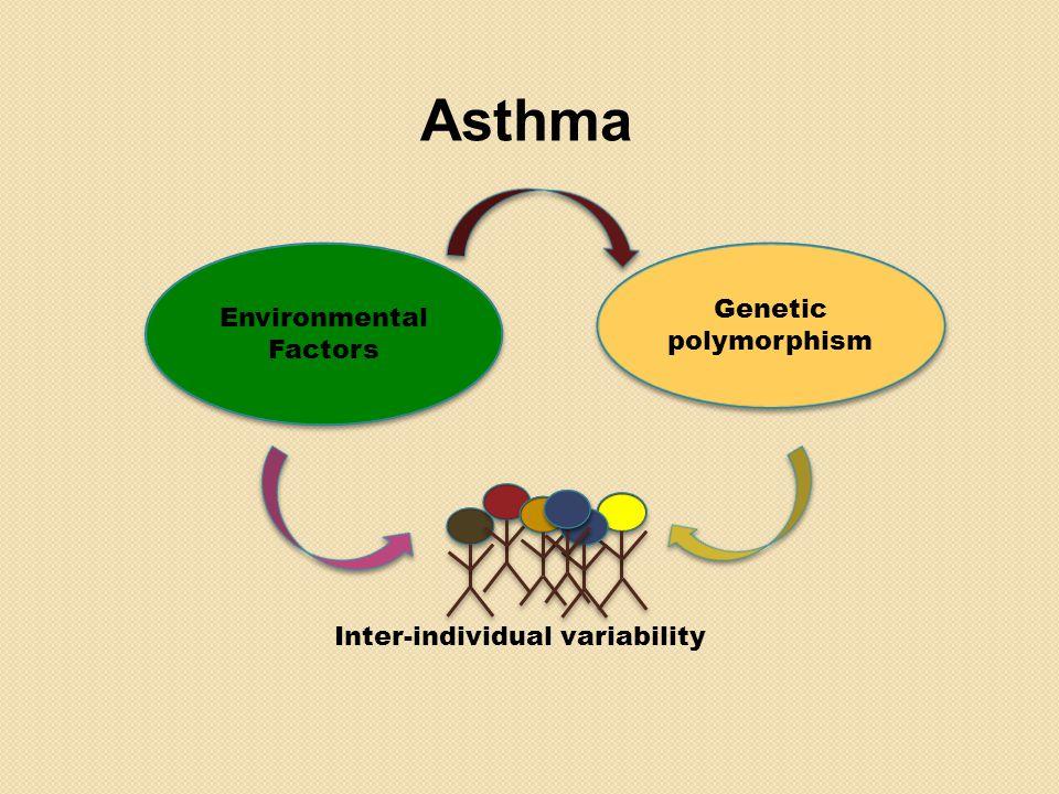 Environmental Factors Environmental Factors Genetic polymorphism Genetic polymorphism Inter-individual variability Asthma