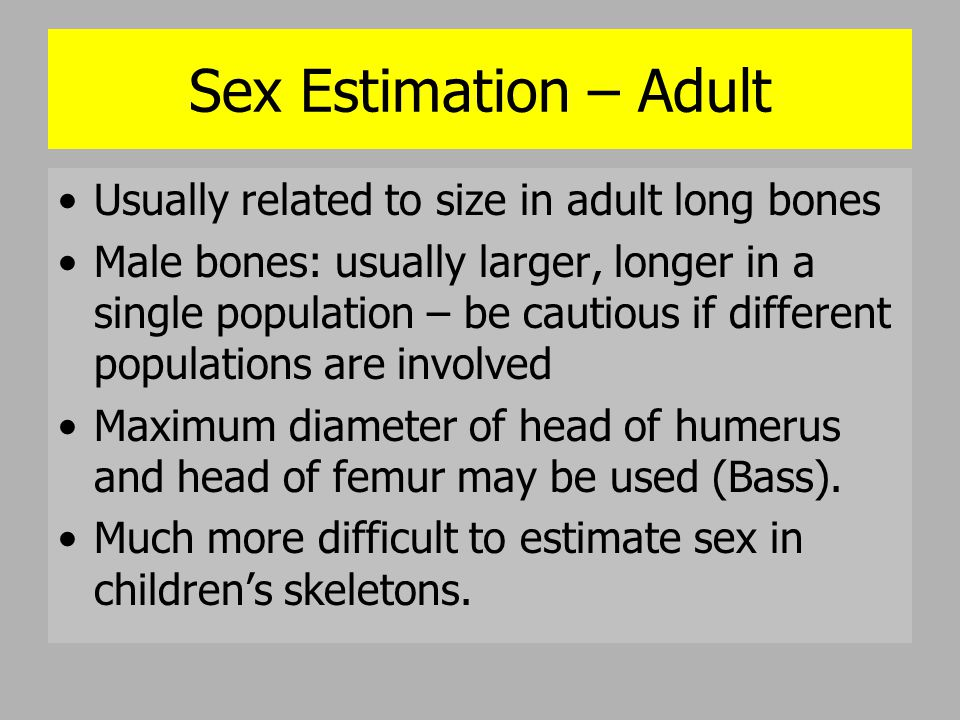 Sex Estimation: Skull Good area for sex determination Generalization: male skull more robust, muscle-marked than female: ABSOLUTE DIFFERENCES SELDOM EXIST (Bass) Sex estimation: face, mandible, vault