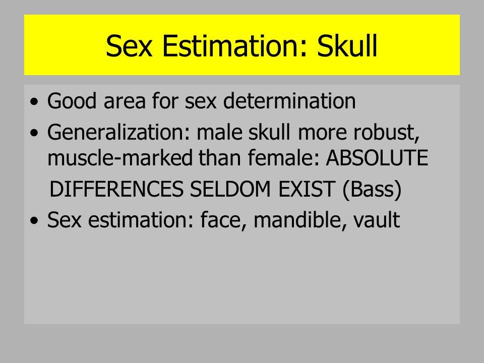Sex Estimation: Face 1.Supraorbital (Brow) ridges: more prominent in males 2.