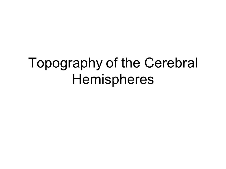 Topography of the Cerebral Hemispheres
