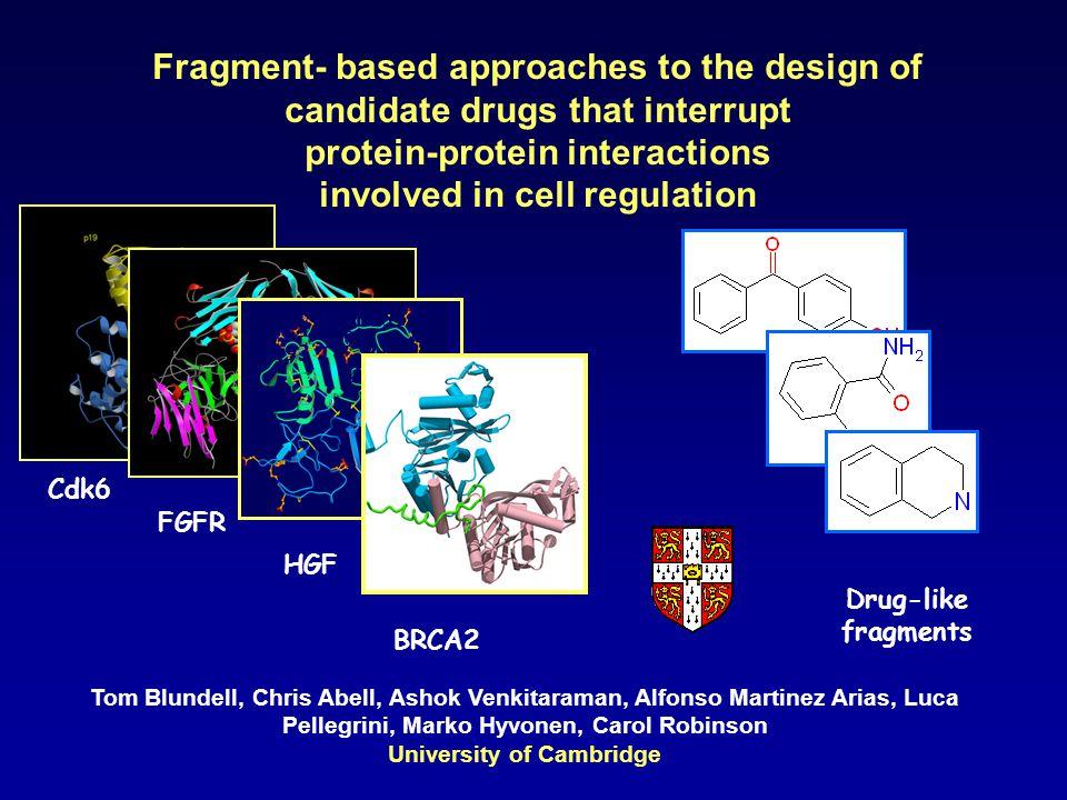 Thrombin fragment identification Novel hits S1 Neutral Fragment Novel binding sites S2-S4 Fragment S2/S4 fragment potency 10  M Linked S1 and S2/S4 fragment: new hybrid compound potency 200nM