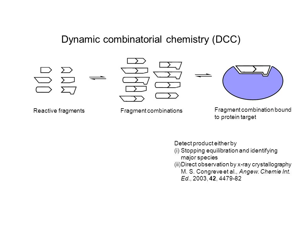 Dynamic combinatorial chemistry (DCC) Reactive fragmentsFragment combinations Fragment combination bound to protein target Detect product either by (i) (i)Stopping equilibration and identifying major species (ii) (ii)Direct observation by x-ray crystallography M.