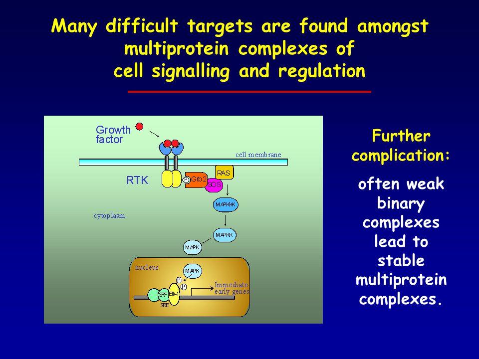Endocytosis Traffick Stability Transcription