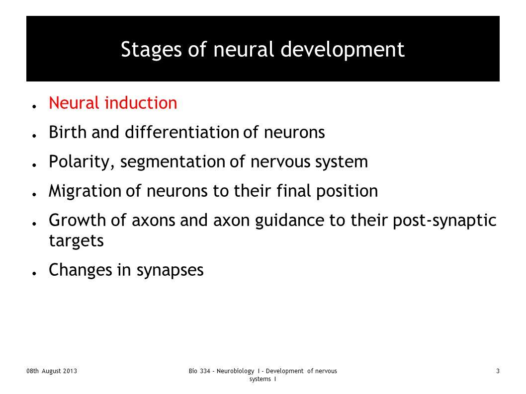 08th August 2013Bio 334 - Neurobiology I - Development of nervous systems I 4 Model systems for studying development C-elegans Drosophila Xenopus Chicken Zebra fish Mouse