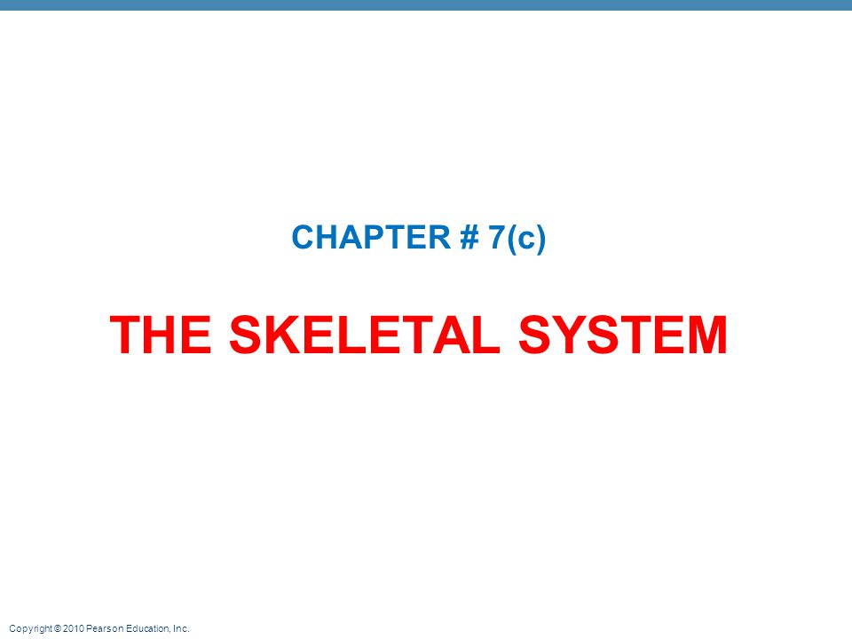 Copyright © 2010 Pearson Education, Inc. THE SKELETAL SYSTEM CHAPTER # 7(c)