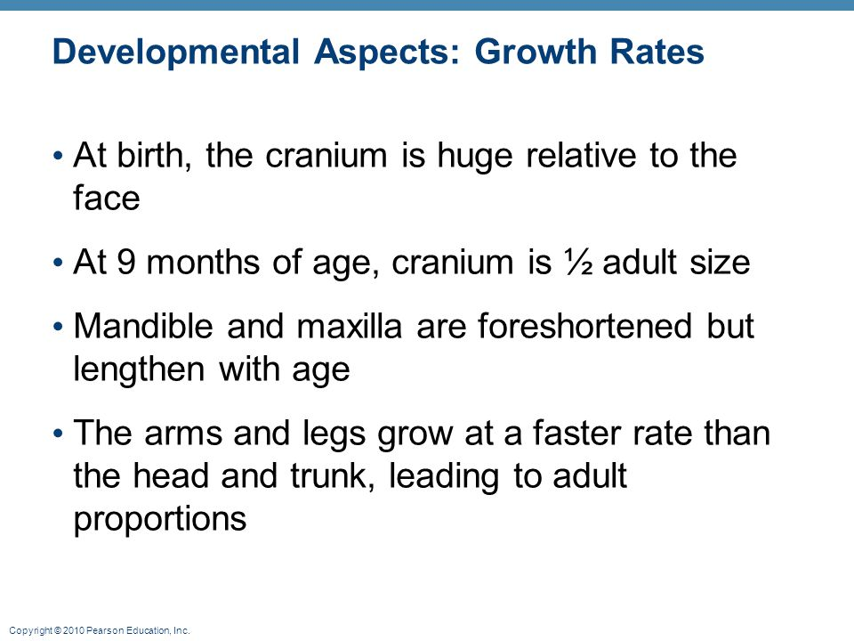 Copyright © 2010 Pearson Education, Inc. Developmental Aspects: Growth Rates At birth, the cranium is huge relative to the face At 9 months of age, cr
