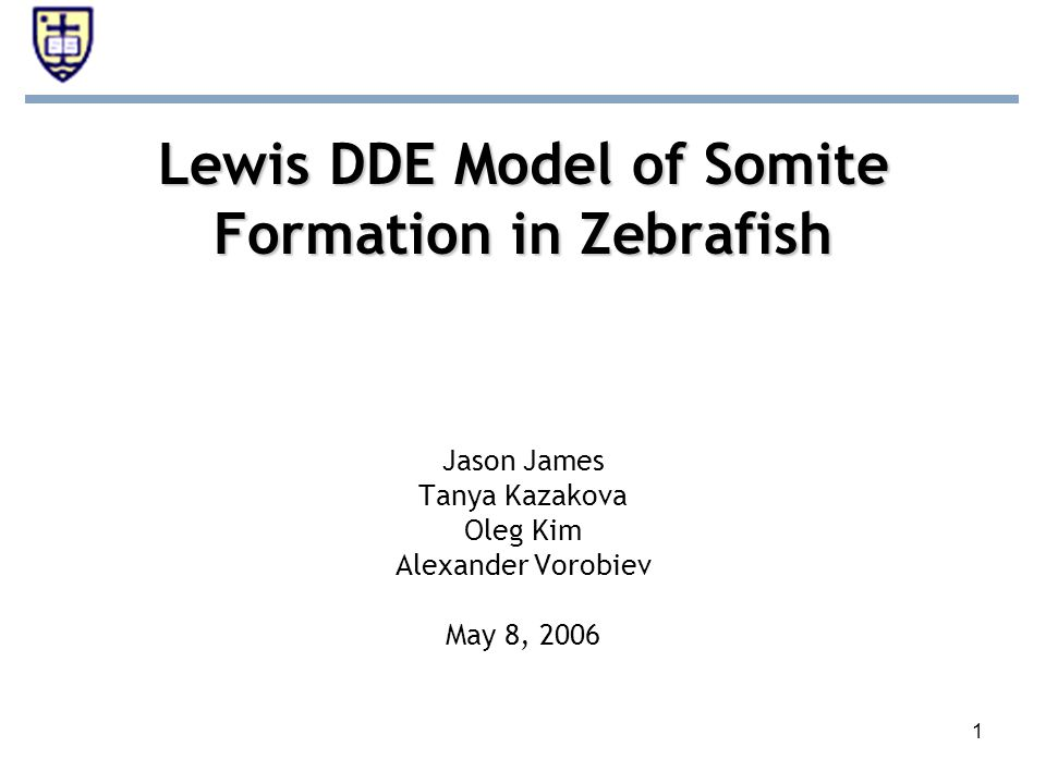 1 Lewis DDE Model of Somite Formation in Zebrafish Jason James Tanya Kazakova Oleg Kim Alexander Vorobiev May 8, 2006