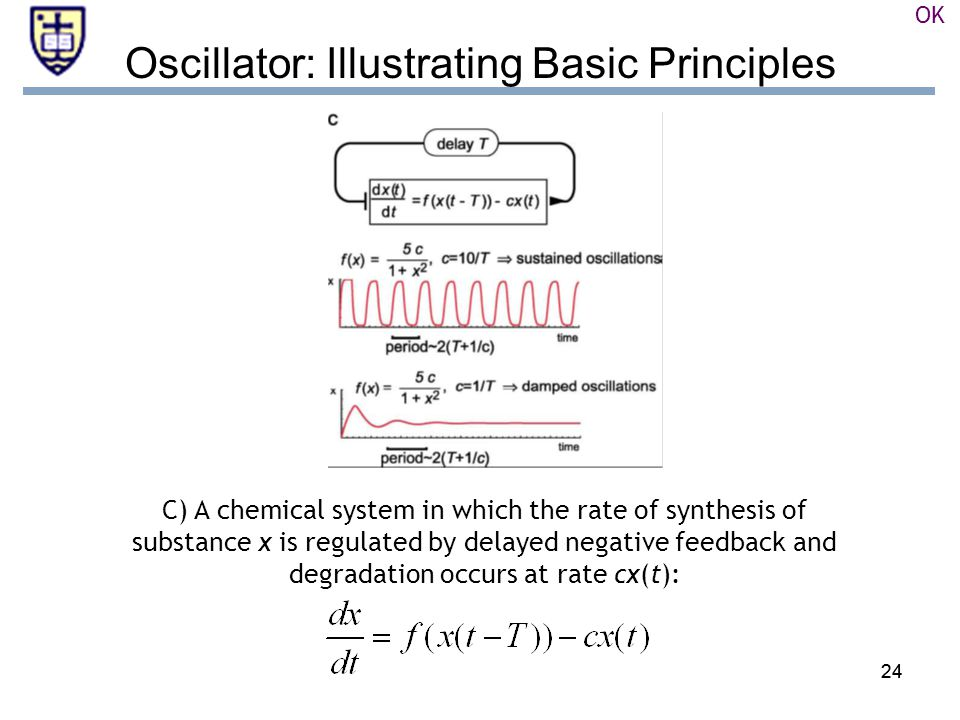 24 Oscillator: Illustrating Basic Principles C) A chemical system in which the rate of synthesis of substance x is regulated by delayed negative feedback and degradation occurs at rate cx(t): OK