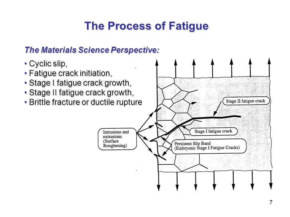 7 The Process of Fatigue The Process of Fatigue The Materials Science Perspective: Cyclic slip, Cyclic slip, Fatigue crack initiation, Fatigue crack i