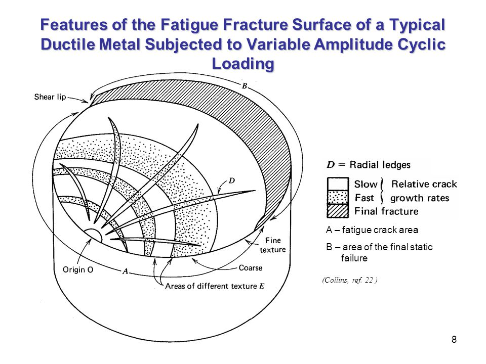 8 Features of the Fatigue Fracture Surface of a Typical Ductile Metal Subjected to Variable Amplitude Cyclic Loading (Collins, ref. 22 ) A – fatigue c