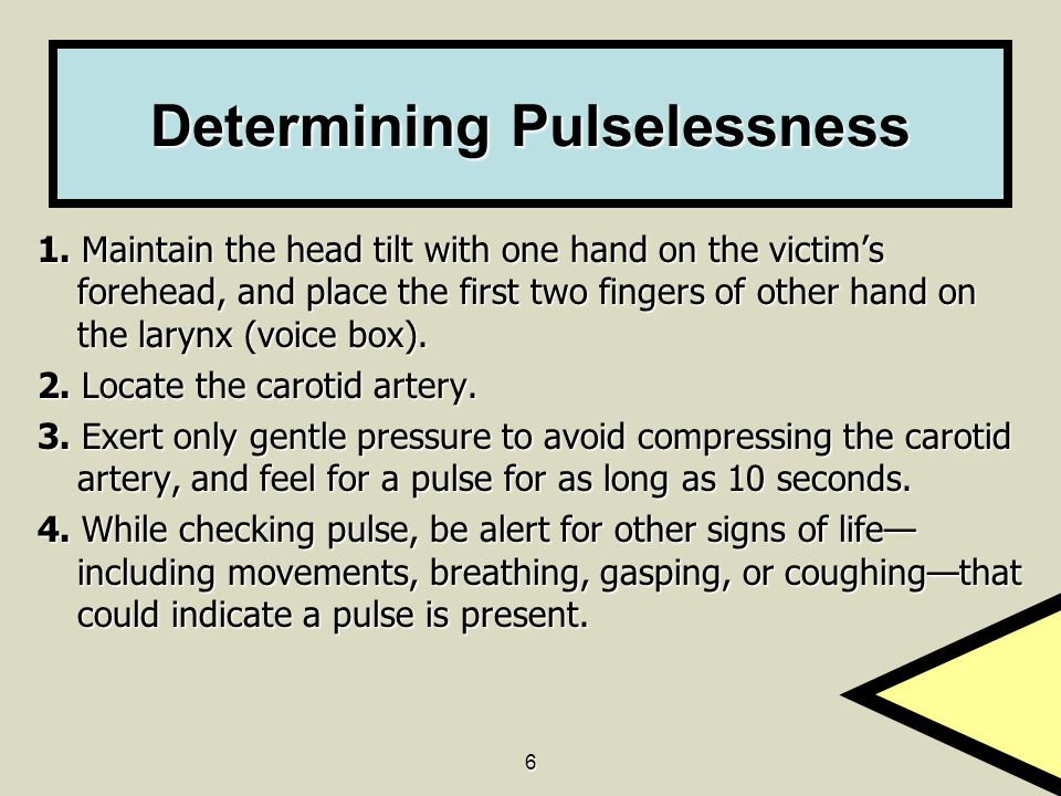 6 Determining Pulselessness 1. Maintain the head tilt with one hand on the victim's forehead, and place the first two fingers of other hand on the lar